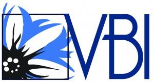 VBI_logo_VOORBEELD